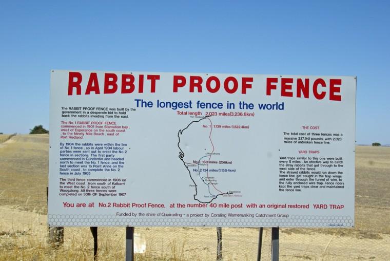 Mapa ograde duge više od 3.000 kilometara koju je australska vlada podigla 1907. godine.