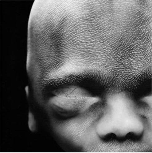Slika br. 17 - Nakon dvadeset sedmica, čovjek je veličine 20 centimetara i na glavi i licu se javljaju dlake