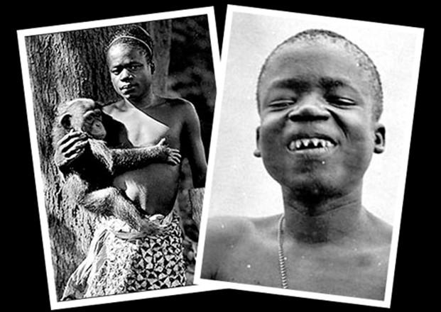evolucija (Ota Benga)